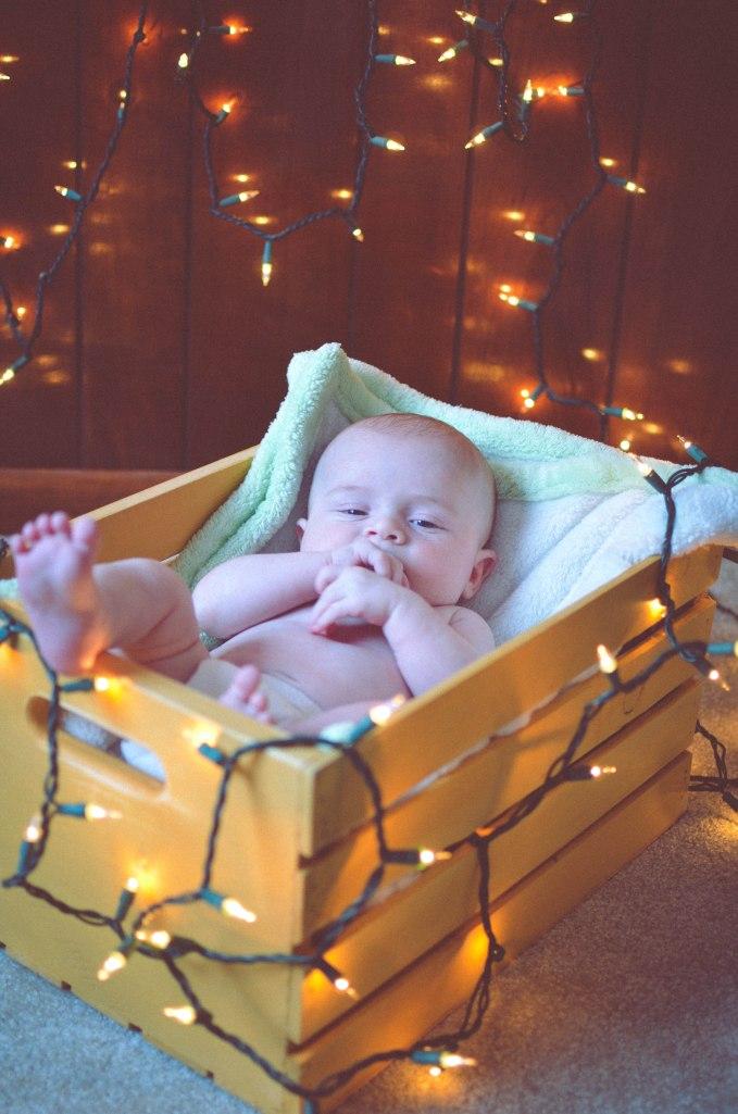 ChristmasLights-11
