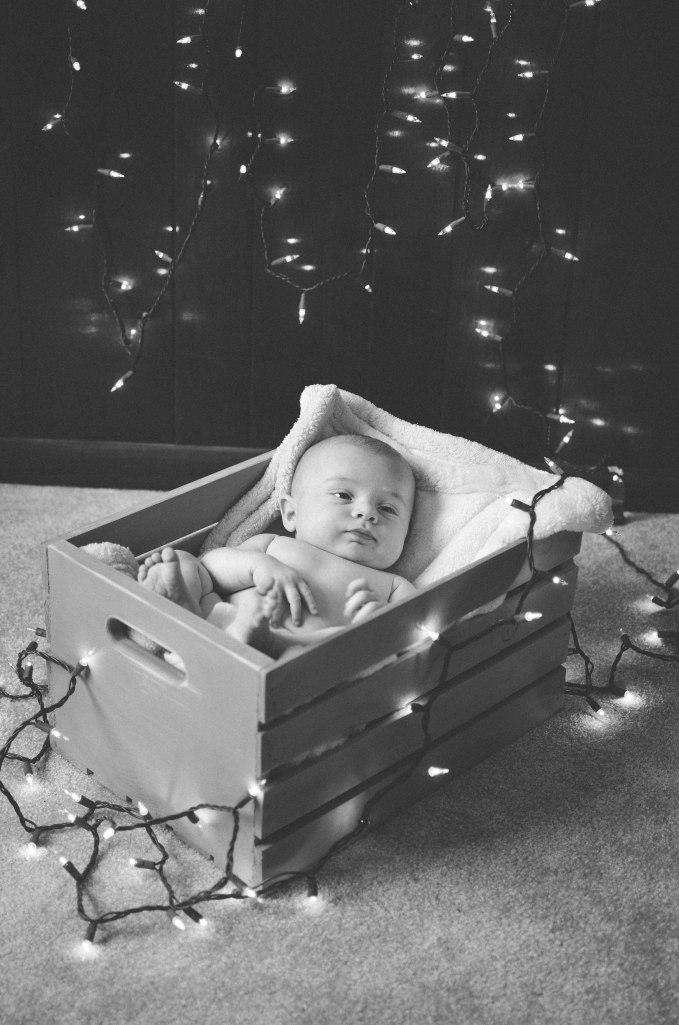 ChristmasLights-15